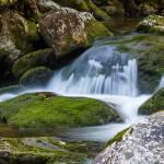 """Flowing over Rocks"" by cdomenig"