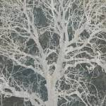 """Linden tree"" by CoraNiele"