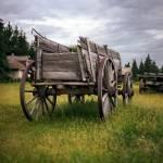"""""""Wagon Ho"""" by ArtbyDesign"""