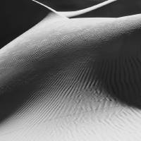 Dune Body Art Prints & Posters by Marylynne Diggs