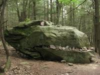 Rock Dinosaur Dragon In the Woods