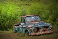 Abandoned-1955 Chevy Pick Up