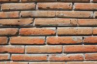 Adobe Bricks in a Wall