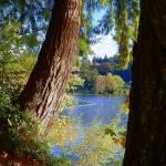 """Splendid View Across The Lake"" by artsandi"