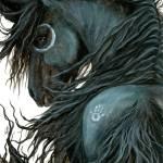 """""""Spirit of the Night"""" by AmyLynBihrle"""
