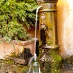 """Roman Fountain"" by raetucker"