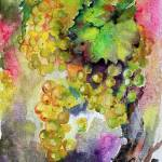 """Cognac Grapes Watercolor by Ginette Callaway"" by GinetteCallaway"
