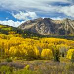 """Colorado Rocky Mountain Fall Foliage"" by lightningman"