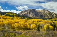 Colorado Rocky Mountain Fall Foliage