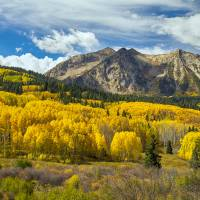"""Colorado Rocky Mountain Fall Foliage"" by James ""BO"" Insogna"