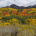 """Colorado Kebler Pass Fall Beauty"" by lightningman"