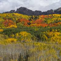 """Colorado Kebler Pass Fall Beauty"" by James ""BO"" Insogna"