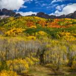 """Colorado Kebler Pass Fall Foliage"" by lightningman"