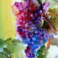 Burgundy Grapes Red Wine Watercolor Painting Art Prints & Posters by Ginette Callaway