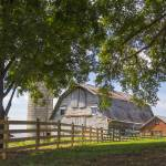 """Cameron Barn North Carolina"" by SamSherman"