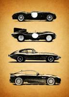 Jaguar Evolution