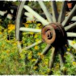 """Wagon in Wild Flowers"" by Tanasi"