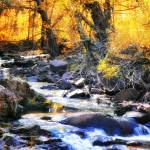 """Autumn Creek"" by LJdesigns"