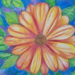 """C:\fakepath\Orange Flower"" by Joannasmith"