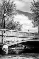 Bridge - Salida, CO