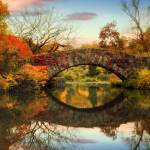 """Dawn at Gapstow Bridge"" by JessicaJenney"