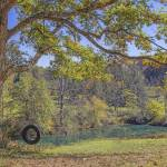 """The Old Tire Swing"" by GlendaBorchelt"