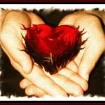 """When Love Burns Deep Within..."" by argosphotos"