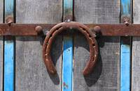 Horseshoe on a Door