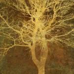 """Golden Tree"" by CoraNiele"