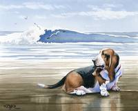 Basset Hound at the Beach
