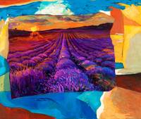 Abstract lavender fields