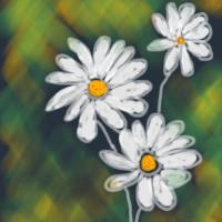 Daisy Art Prints & Posters by Kim Early