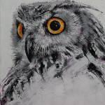 """Spirit Owl"" by creese"