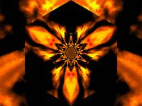 Fire Lotus Light Orange 1