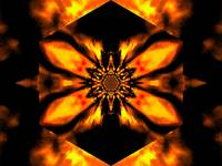 Fire Lotus Light Orange 2