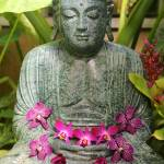 """Buddha with Orchids"" by Groecar"