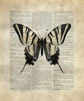 Vintage_DictionaryArt_Butterfly_2