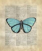 Vintage_DictionaryArt_Butterfly_3
