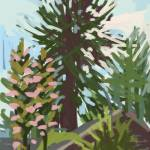 """Redwood Tree Russian River"" by rogerwhite"