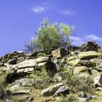 """South Mountain 5-9-13 127-Edit"" by digitallightcreations"