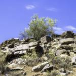 """South Mountain 5-9-13 127"" by digitallightcreations"