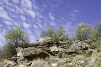 South Mountain 5-9-13 130