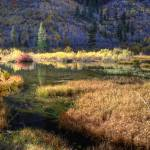 """Beaver Pond in Autumn"" by SederquistPhotography"