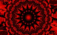 Red Dharma Sky Wheel 1