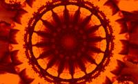 Golden Orange Dharma Sky Wheel 1