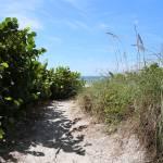 """Winding Path to the Beach"" by Groecar"