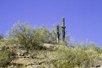 South Mountain 5-9-13 2 (1)