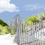 """Beach Fence and Dune"" by ElainePlesser"