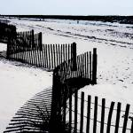 """Beach Fence Skeleton Spine on Desaturated Beach"" by ElainePlesser"