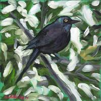 Winter Grackle